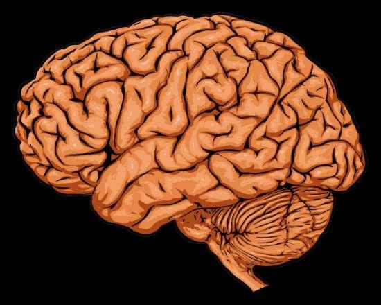 Мысленные эксперименты по анализу разума