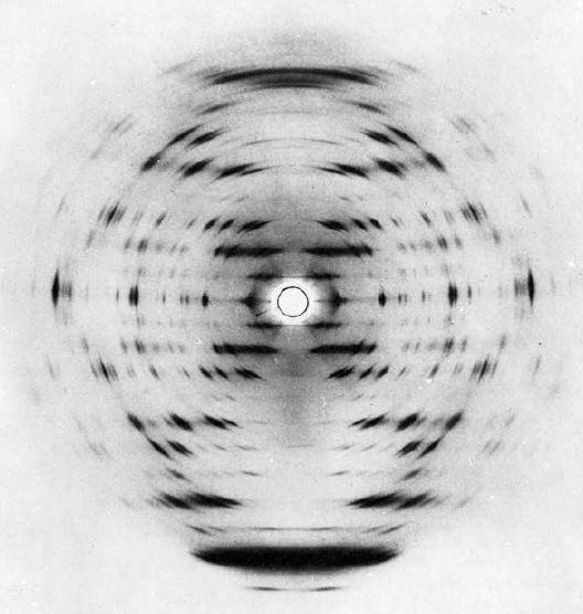Картина дифракции рентгеновских лучей на кристалле ДНК