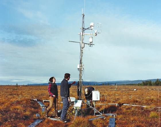 Контрольно-измерительная установка для круглогодичного определения оборота диоксида углерода