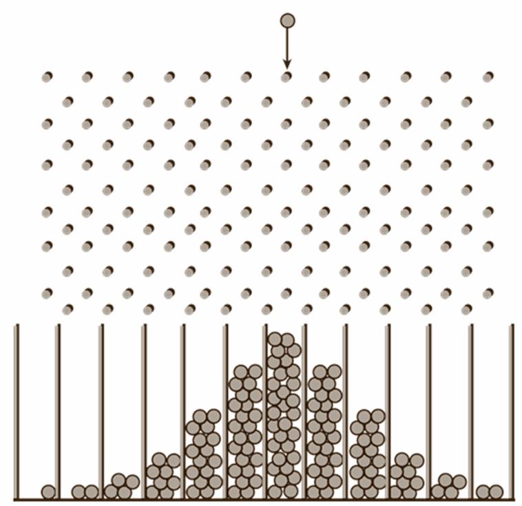Сто сорок шариков падающих по доске Гальтона