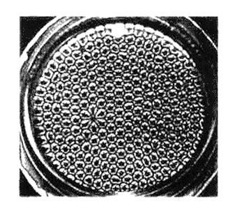 Ячейки Бенара